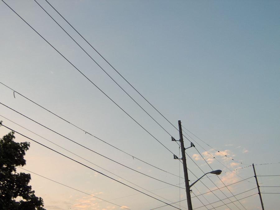 2006-08-19 birds on wire