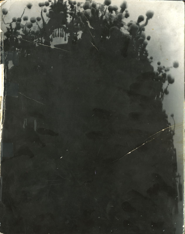 Book22B Cover