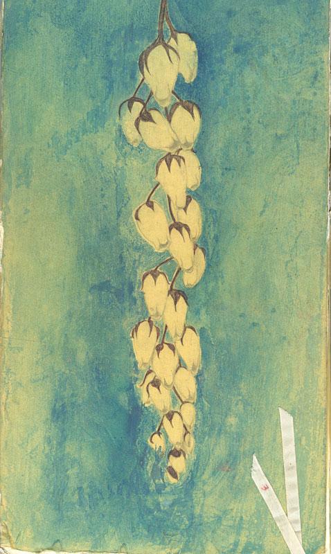Book30 Cover