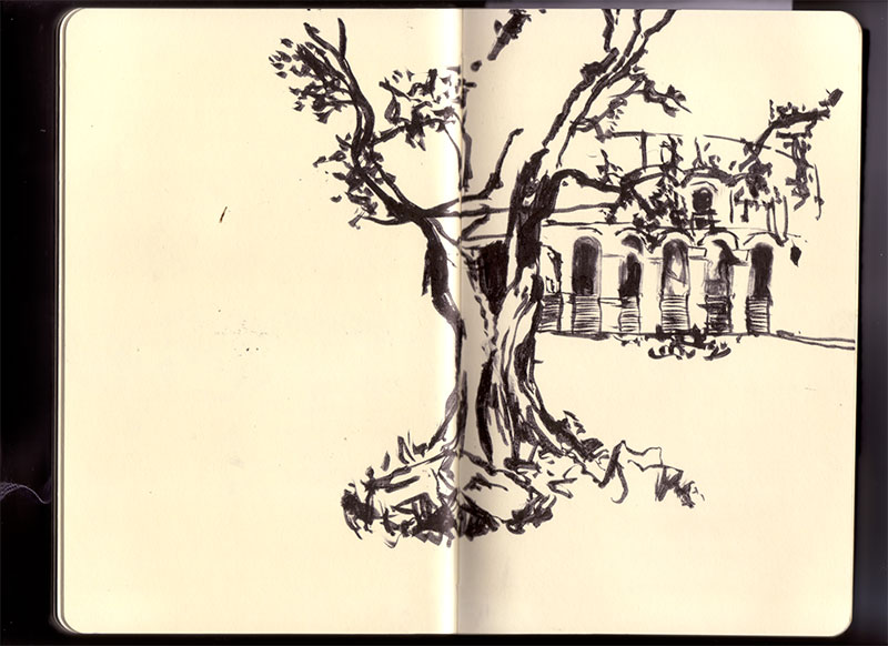 Book31 Roma16
