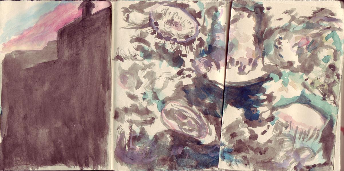 Book38 jellyfish
