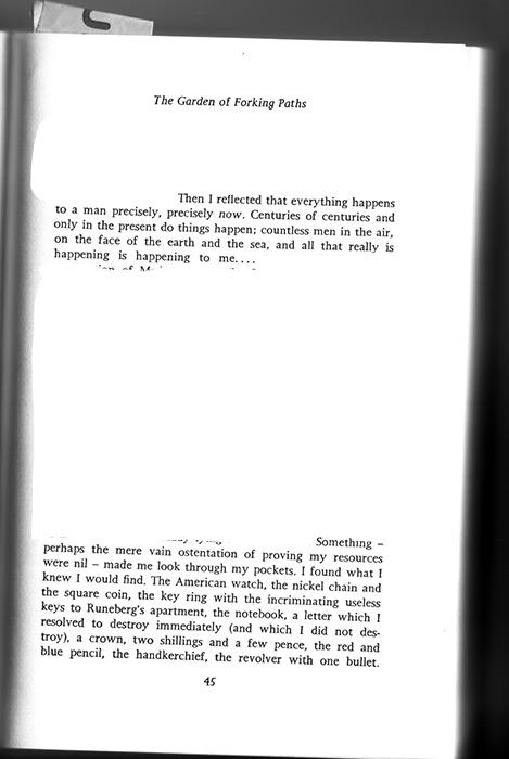 TheGardenOfForkingPaths-pg45